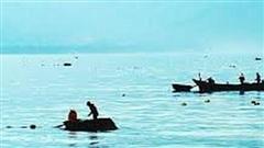 Tàu cá va chạm ghe câu mực giữa đêm, 1 người chết, 1 mất tích