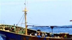 Indonesia phát hiện xác 1 ngư dân trong tủ đông tàu cá Trung Quốc, nghi bị bạo hành