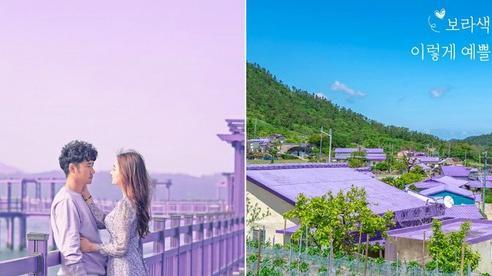 Một hòn đảo kỳ lạ vừa xuất hiện ở Hàn Quốc đã tạo cơn bão check-in trên MXH: Tất cả mọi thứ đều nhuốm màu 'tím lịm tìm sim'