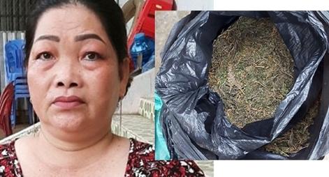 Sang Campuchia mua cần sa mang về Việt Nam bán kiếm lời