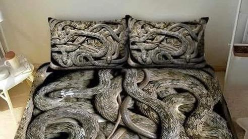 Bộ khăn trải giường thử thách mọi giấc ngủ nhất của năm với hình ảnh bầy trăn bò chật kín khiến nhiều người chỉ muốn ngất lịm cả tuần chưa tỉnh