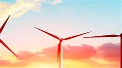 Một công ty vốn điều lệ 1.350 tỷ sở hữu nhiều dự án điện mặt trời, điện gió nộp hồ sơ niêm yết tại HoSE