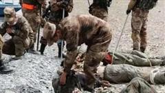 Ẩu đả tại biên giới, 20 binh sĩ Ấn Độ thiệt mạng