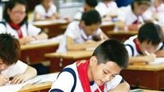 Hơn 3.000 học sinh Hà Nội dự tuyển lớp 6 chương trình song bằng