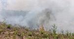 Thêm vụ cháy rừng ở núi Thiên Ấn