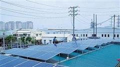 Cần phát tín hiệu về giá để thu hút tư nhân đầu tư vào năng lượng tái tạo