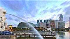 Việc làm trong lĩnh vực công nghệ 'lên ngôi' tại Singapore