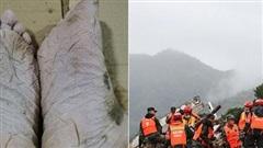 Đôi chân nhăn nheo đến biến dạng của lính cứu hỏa sau 30 tiếng tìm kiếm nạn nhân vụ lở đất