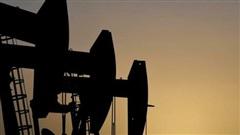 Giá xăng dầu hôm nay 15/7: Tiếp tục đà suy giảm