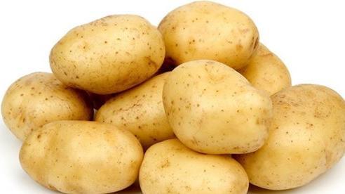 Những nguy hiểm chết người khi ăn khoai tây ai cũng phải biết