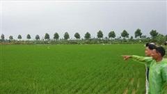 Không bỏ hoang đất nông nghiệp