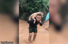 Chú chó được cậu chủ cõng vượt lũ được dân mạng rần rần chia sẻ vì quá đáng yêu