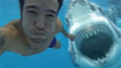 Đi hưởng tuần trăng mật thì đụng độ cá mập, chàng trai tử nạn sau bức ảnh selfie cuối đời, câu chuyện đầy bi thương nhưng sự thật là gì?