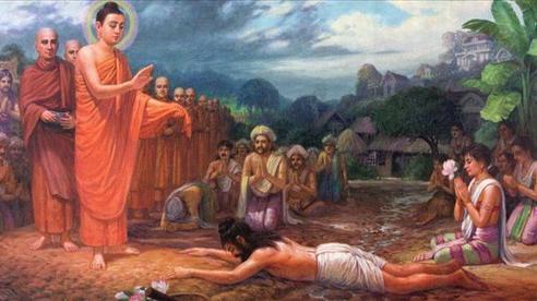 Đức Phật nói: Đời người có 4 thứ không tồn tại vĩnh cửu, ai cũng nên biết để bớt thống khổ