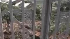 Làm cổng gắn kèm bộ khóa rất to để chống trộm nhưng ông chủ đất không ngờ để lộ cả con đường thông thẳng vào nhà vì thiết kế cửa có 1-0-2