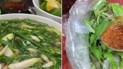 Những loại rau chia người Việt thành 2 phe rõ rệt, đa phần bị 'xa lánh' vì mùi hương khó ngửi