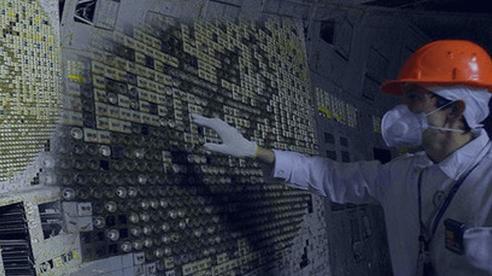 NASA muốn mang nấm ở Chernobyl lên trồng ở sao Hỏa, bởi nó có thể hấp thụ bức xạ vũ trụ để sống