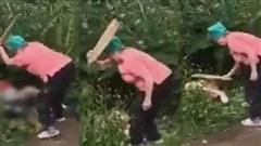 Phát hiện cặp đôi thiếu ý thức đang 'mây mưa' trong bụi cỏ trước nhà, cụ bà bá đạo cầm ván gỗ lao vào đánh 'chí mạng' liên tục