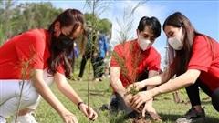 Mặc thời tiết nắng gắt, Đông Nhi - Ông Cao Thắng cùng Phạm Quỳnh Anh hào hứng trồng cây gây rừng