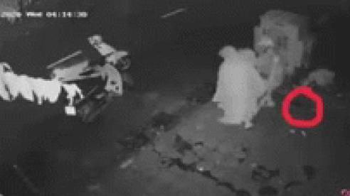 Pha trộm chậu rau cồng kềnh của 2 người phụ nữ, chủ nhà mất của, check camera mà không nhịn được cười