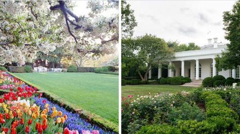 Dân mạng thi nhau post ảnh mỉa mai Đệ nhất phu nhân Mỹ Melania đã 'làm hỏng' Vườn Hồng