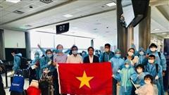 Đưa gần 350 công dân Việt Namtừ Hoa Kỳtrở về nước an toàn