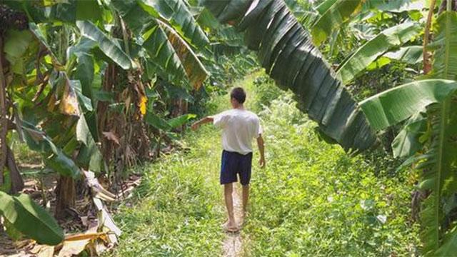 NÓNG: Đã bắt được nghi phạm hiếp dâm bé gái trong vườn chuối ở Hà Nội