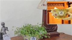 Dùng chiếc bát cũ làm chậu trồng cây rồi đem bán với giá rẻ mạt trên Ebay, người đàn ông không ngờ nó là báu vật từ thế kỷ 19