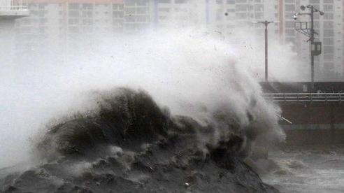 Chùm ảnh về siêu bão Haishen mạnh kỷ lục càn quét Nhật Bản và Hàn Quốc: Cuồng phong đi qua, còn hoang tàn ở lại