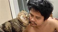 Trải lòng của người vợ bị cắm sừng: 'Tiểu tam' mèo đã cướp chồng tôi trắng trợn như thế nào