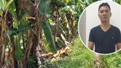 Gã yêu râu xanh hiếp dâm bé gái 12 tuổi ở Hà Nội: Không nghề nghiệp, lười lao động, hàng tháng sống cùng người tình bằng tiền con gái gửi về