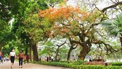 Du lịch Việt hứa hẹn khởi sắc