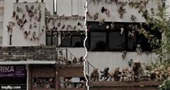Sự thật về căn nhà phủ kín búp bê hình thù ghê rợn ở Mexico