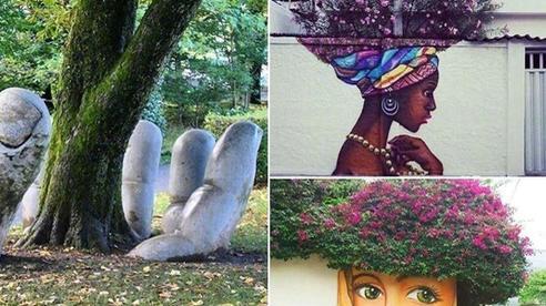 Ngỡ ngàng với những màn kết hợp đỉnh cao giữa tự nhiên và nghệ thuật trên đường phố