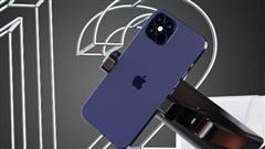 'Thợ săn' iPhone ở Hà Nội: iPhone 12 đầu tiên về Việt Nam khó có thể hét giá 200 triệu