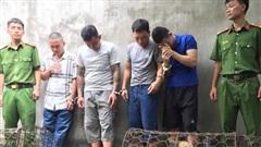 Nhóm 'cẩu tặc' mang theo súng kiếm đi khắp tỉnh Nghệ An, mỗi đêm trộm nửa tấn chó