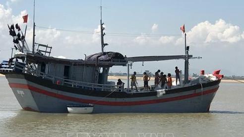 Phú Yên kêu gọi tàu thuyền tìm nơi tránh trú, thu hoạch nhanh lúa Hè Thu