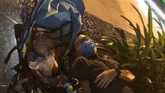 Bức ảnh chồng đang đẩy con đi chơi thì lăn ra ngủ giữa công viên gây xôn xao MXH và sự thật đằng sau