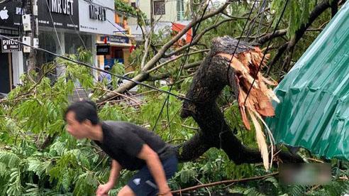 Bão số 5 đổ bộ gây mưa to gió giật kinh hoàng ở Huế, cây gãy la liệt trên đường, nhiều nhà dân tốc mái