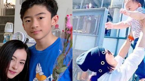 Con trai cả của Tạ Đình Phong vô ý tiết lộ lý do Trương Bá Chi không thể công khai bố ruột đứa con thứ 3 qua câu nói này?