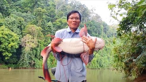 Kinh ngạc xem hội anh em vào rừng già săn cá lăng nặng hơn 15 kg!!!