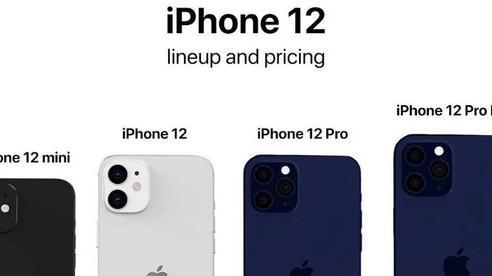 Rò rỉ giá bán iPhone 12 mini, chỉ 16 triệu đồng?