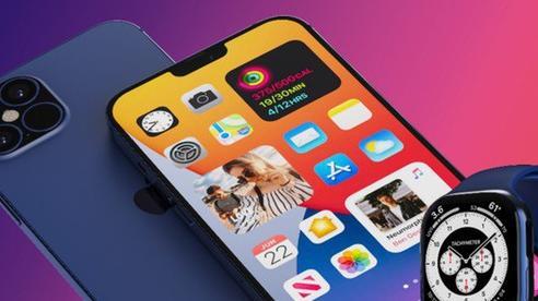 Soi biến động giá bán iPhone cũ tại Việt Nam trước và sau khi iPhone 12 ra mắt