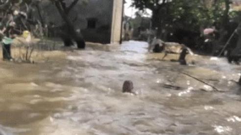 Xót xa cảnh bé trai nỗ lực bơi trong dòng nước lũ lấy hàng cứu trợ, pha nhảy quyết đoán của chiến sĩ bộ đội gây chú ý