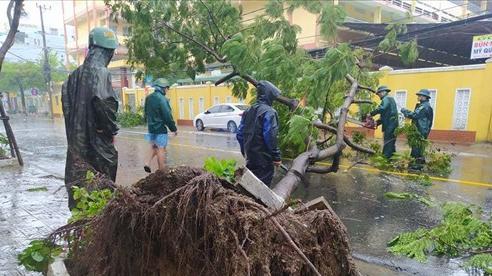 Bão số 9 giật cấp 13 quật ngã cây xanh la liệt, bỏ xe tìm nơi trú ẩn