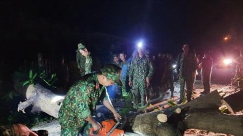 Sạt lở đất vùi lấp hơn 50 người ở Quảng Nam: Đoàn công binh, xe múc đến hiện trường