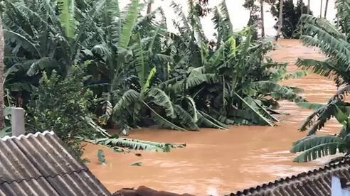 Bão số 9: Nước lũ đang dâng cao, nạn nhân đi cấp cứu phải quay về vì đường bị chia cắt