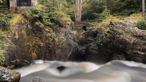 Cách chụp ảnh phơi sáng cực ảo diệu với iPhone mà không cần phụ kiện và ứng dụng ngoài