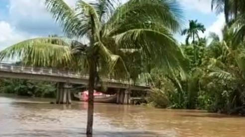 Cây dừa kỳ lạ mọc giữa lòng sông ở Bến Tre: Chuyện tưởng đùa nhưng hóa ra lại có thật!