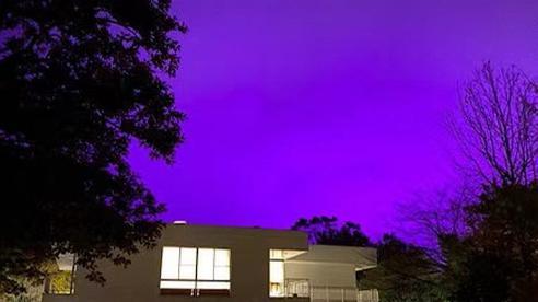 Nhật Bản: Bầu trời bỗng chuyển màu tím như phim kinh dị khiến nhiều người hoang mang, nhưng khi biết nguyên nhân ai nấy đều ngã ngửa
